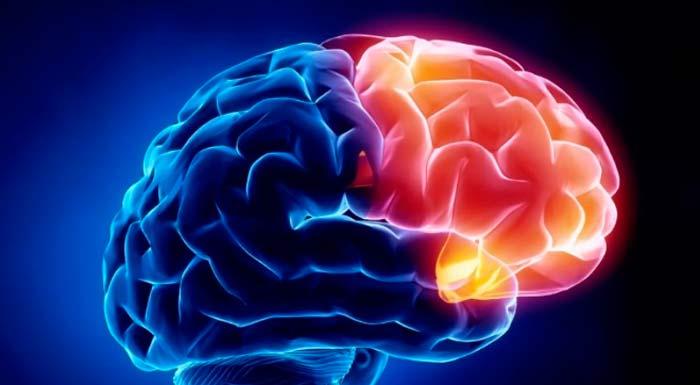 Prevenir el ictus: ¿una responsabilidad exclusiva del neurólogo?